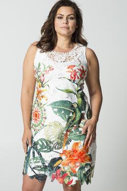 Kanten jurk met tropische print, Multicolor